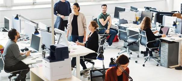 C600_Office1